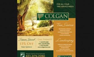 Colgan Tree & Landscape